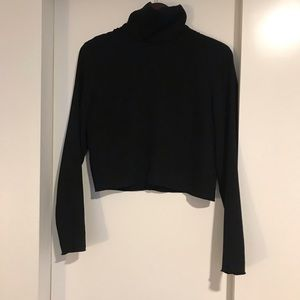 Aritzia Crop turtle neck